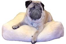 Hvad med en hyggelig pude til hunden (Foto Petworld.dk)