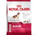 Royal Canin er godt når du har hunden med rundt omkring (Foto Petworld.dk)