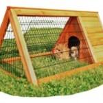 Tag kaninerne med ud i sommerluften (foto lavprisdyrehandel.dk)